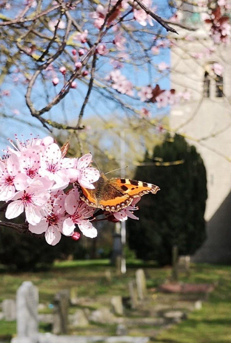 Nature photography winner